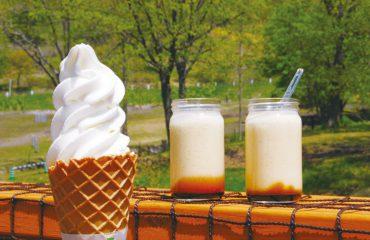 酪農もさかん。アイスクリーム、プリンなどの乳製品やスイーツを購入できる店舗も多数あります。